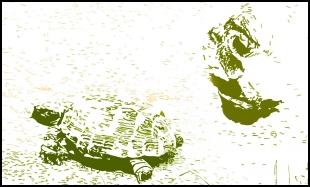 high speed chase - Void lon iXaarii